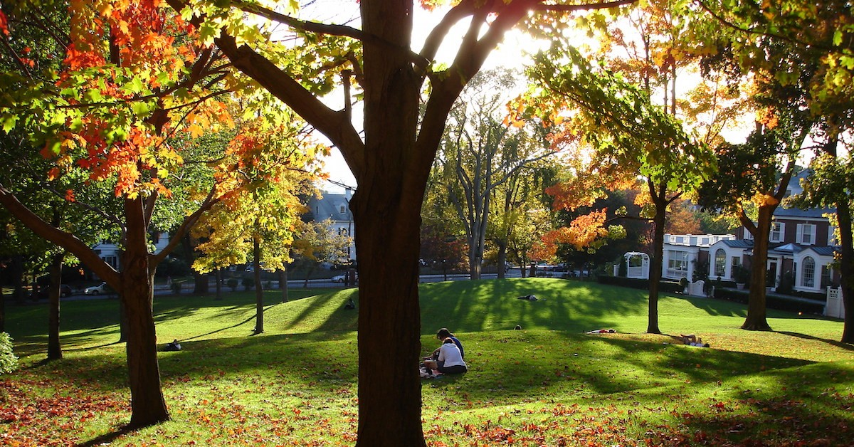 tufts university supplement essays This year's application to tufts university asks potential students to  admissions  lee coffin announced the revamped essay section in a blog.
