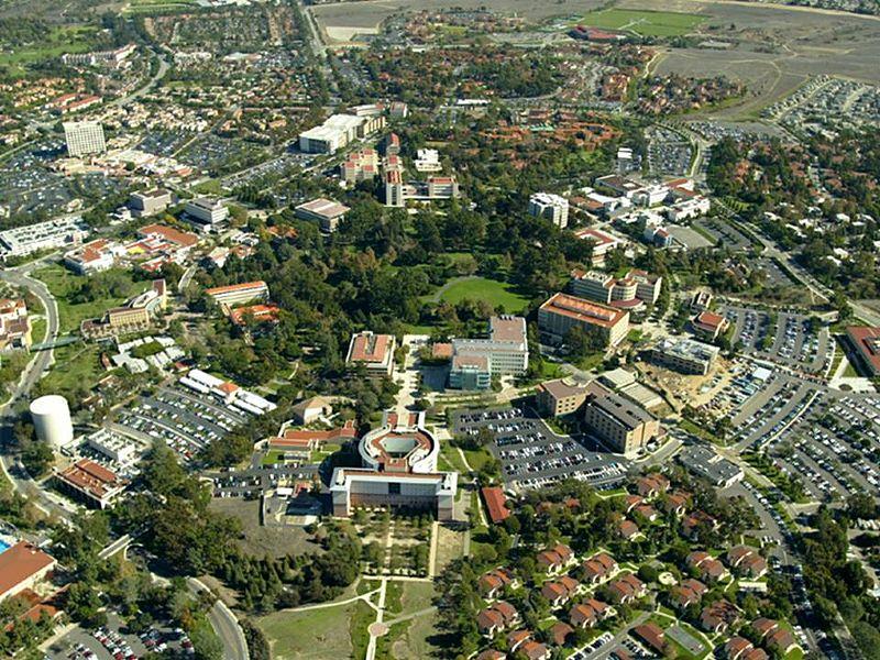 Which school has better UNDERGRADUATE economic program ( UC Berkeley, UCLA, UC San Diego, UC Davis )?