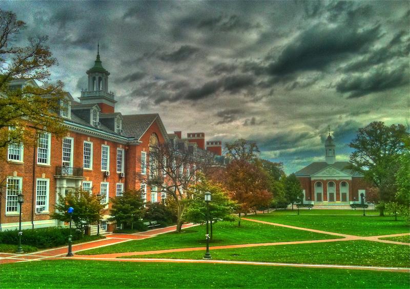 Best college admission essays johns hopkins