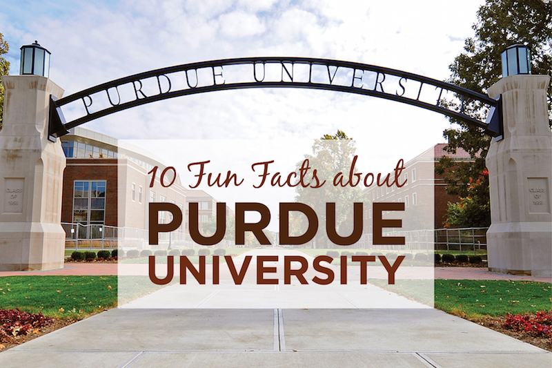 purdue university essay prompt Transfer applicants applicants transferring from a four-year college or university or a community college.