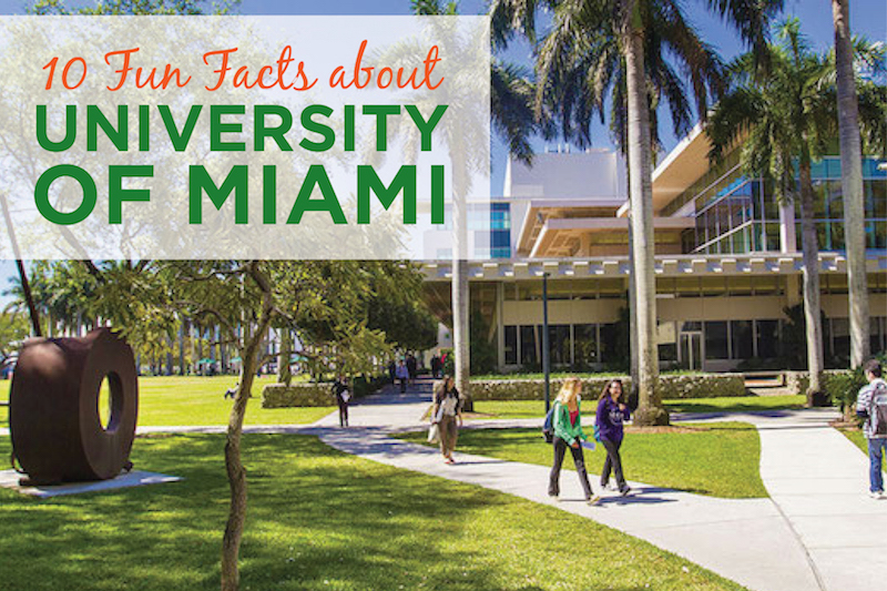 university of miami admissions essay University of miami office of undergraduate admission, coral gables, fl 6,206 likes 115 talking about this 76 were here join for updates from um's.