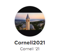 "why cornell"" supplemental essay examples admitsee  perfect cut that would allow me to parachute off a self made cliff of couch cushions and pillows unlock her full successful cornell application file"