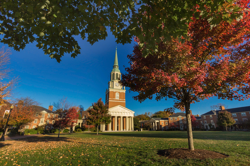 wake forest essays Do you want to go to wake forest university see admissions data including the acceptance rate, financial aid, scholarships, tuition costs, and more.