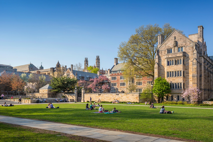Common application essay help yale