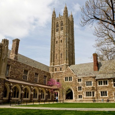 Princeton admissions essay