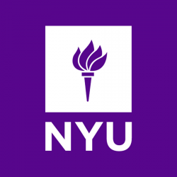how to tackle the why nyu essay prompt examples admitsee vc24 nyu 19