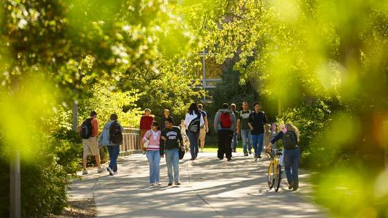 MSU's Campus